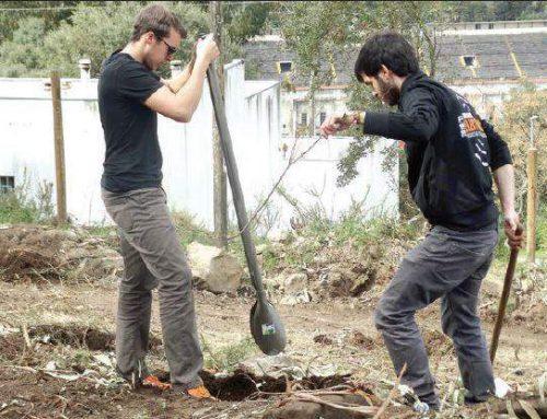 """Mais 1500 árvores plantadas na iniciativa """"Oxigenar Braga"""""""