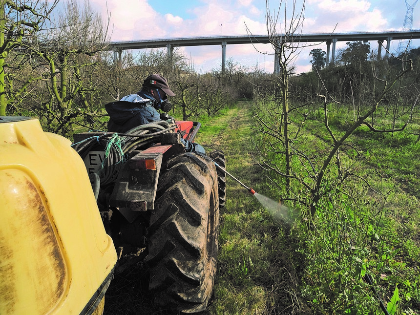 Herbicida na agricultura pode provocar cancro - A Nova Agricultura