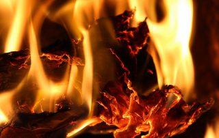 phosphorland queima e/ou queimadas