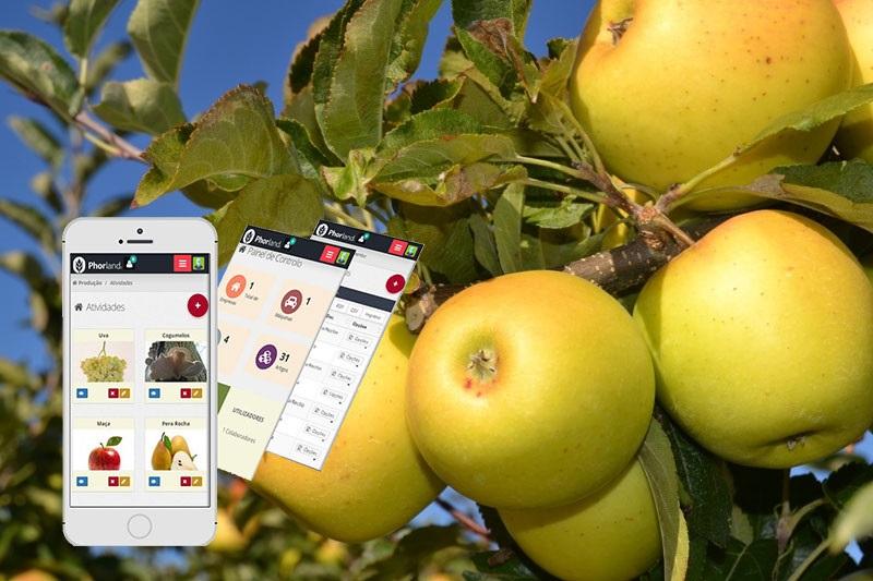 Jornal Demo Phorland A Nova Agricultura